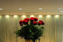 vivaga-blommor-2-1